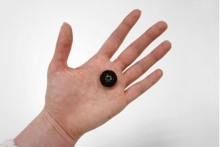 Кнопка пришивная декоративная 2 см ST 01062051