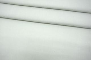 Плательный хлопок бледно-мятный BRS-L20 05062178