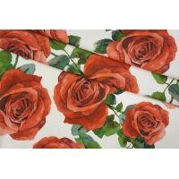 Трикотаж хлопковый розы Monnalisa PRT-D3 28031905