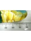 Костюмно-плательная ткань кактусы UAE-B7 27121731