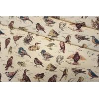 Поплин рубашечный с птичками Liberty PRT-B3 16111916